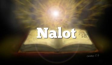 Nalot