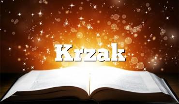 Krzak