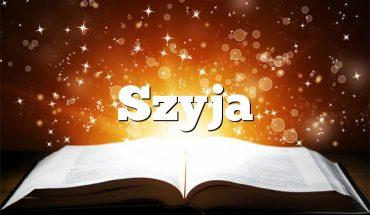 Szyja